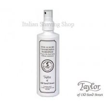 Hair Spray Taylor
